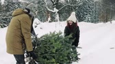 conifère : Grandfather and small girl getting a Christmas tree in forest.