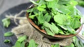 ingredient : Fresh Mint (not loopable) Stock Footage