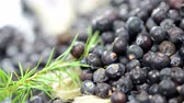 freshness : Juniper Berries (loopable) Stock Footage