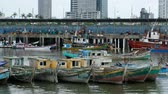urbane : Panama City, Panama - March 2018: Fisher boats and fishermen at fish market  harbor in Panama City Stock Footage
