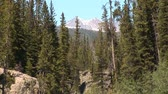 bergwandelen : Rocky Mountains in Montana Stockvideo