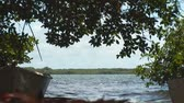 yat : Rowboats in mangrove Stok Video
