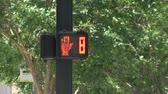 скрестив : Pedestrian traffic light Стоковые видеозаписи