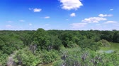 oak : Aerial of nature preserve in Central Florida Stock Footage