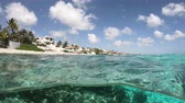 Resorts and coral on Bonaire