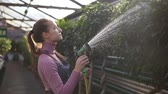waterhose : Young attractive female gardener in uniform watering plants with garden hose in greenhouse