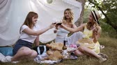 clinking : Hen party outdoors. Three pretty woman have a picnic, sitting on the plaid, drinking red wine. Cheers. White sheet hanging on a trees