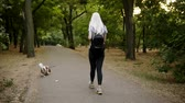 epagneul : Long blonde haired young woman in black leggings and backpack walking by the greem park with her pet leashed - cavalier king charles spaniel. Rare view Vidéos Libres De Droits