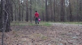 ищу : Man with a basket walks in the coniferous forest and looks for mushrooms. Стоковые видеозаписи