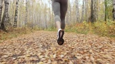 spor ayakkabısı : Young blonde woman running in the autumn park. Stok Video