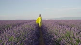 lavanda : SLOW MOTION: Young woman in yellow dress walking and spinning in purple lavender field