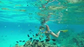 polinésia : SLOW MOTION UNDERWATER: Young diver woman snorkeling and swimming underwater, feeding beautiful colorful exotic fish in tropical reef in crystal clear lagoon ocean in French Polynesia