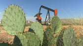 Техас : CLOSE UP: Industrial oil pump jack working and pumping crude oil for fossil fuel energy with drilling rig in oil field. Nodding donkey pump against the blue sky pumping behind the desert cactuses