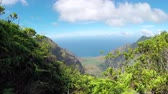 gözcü : Stunning view of amazing canyon valley with lush rainforest jungle overlooking crystal clear ocean bay. Beautiful nature at mountain top lookout point along the famous Kalalau trail in Hawaii Stok Video