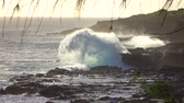 waterdrop : SLOW MOTION: Huge ocean waves crushing and splashing heavily into rough dark volcanic rocks on rough rocky shore in Hawaii island. Ocean mist rising up above the powerful restless sea at the coastline