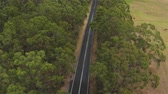 eukaliptus : AERIAL, MOVING BACKWARDS: Flying above empty straight highway road in the middle of beautiful green lush eucalyptus tree forest and vast green meadow field with hay bales lying along the road