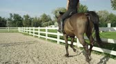 галоп : SLOW MOTION CLOSE UP: Beautiful big dark brown gelding cantering in sandy manege. Dressage female rider horseback riding a strong powerful brown stallion horse, galloping in outdoors riding arena