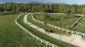 koňmo : AERIAL: Flying above beautiful big dark bay gelding walking on dusty path on sunny summer day with rocky mountains in the background. Young female rider horseback riding strong powerful brown stallion Dostupné videozáznamy