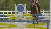 riding arena : SLOW MOTION CLOSE UP: Unrecognizable horseman horseback riding strong brown horse showjumping over poles in sandy parkour dressage arena. Competitive rider training jumping over obstacles in manege