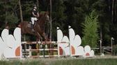 riding arena : SLOW MOTION, CLOSE UP: Beautiful brown horse jumping over fence and performing in competitive event on outdoors sandy parkour riding arena. Powerful gelding competing in horseback riding in manege