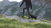 skalní útes : SLOW MOTION: Cheerful strong female and senior pet dog walking uphill on beautiful mountaineering route with rocks and meadow. Smiling girl hiking in mountains with steep rockface in the background