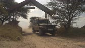 tozlu : SERENGETI, TANZANIA - JUNE 10, 2016: All terrain safari jeep starting a game drive and driving tourists along the dusty road leading through Serengeti National Park gate in Tanzania, Africa Stok Video