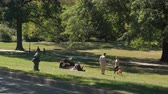 desatualizado : NEW YORK, USA - SEPTEMBER 28: Driving past people in New York enjoying sunny day in beautiful lush green Central park, walking dogs after work and spending quality family time in nature having picnic