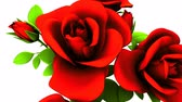 encantador : Red roses  bouquet on white background.3DCG rendering animation that can loop.