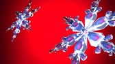 floco de neve : Clear snow crystals on red backgorund.Loop able 3D render animation. Vídeos