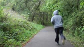 runners : Jogger on a Path in the Park Away from Camera Stock Footage