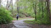 runners : Jogger Coming around the Curve Towards Camera Stock Footage