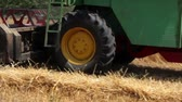 yellow : harvester in the wheat field  Stock Footage