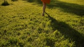 flor cabeça : Woman feet run by grass in park. No face. Sunset or surise. Super slow motion. Middle skirt, slender legs.