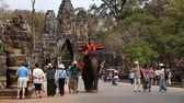 elefante : Siam Rip, Cambodia - January 15, 2017: In the popular ancient architectural complex Angkor Wat offers tourists sightseeing tours riding on an elephant.