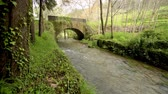 beleza na natureza : Old rock bridge over Filveda river in Albergaria-a-Velha, Portugal. Stock Footage