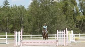 mare : Horse jumps the fence and exit right. Slow mo