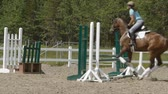 mare : Horse riding series. The horse jump the fence.
