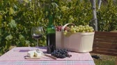 Still life video on a a bottle of wine, cheese and grape set on a table in front of a vineyard (dolly)