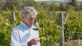 A wine grower testing his wine in front of a vineyard background (dolly) Стоковые видеозаписи