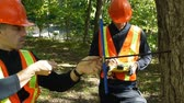 Environment workers taking a wood sample out of a tree trunk Стоковые видеозаписи
