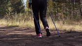 escandinavo : Legs of a woman practicing nordic walking in the autumn forest, she walks away from the camera. Vídeos