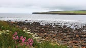 nagy britannia : View of the Bay Of Skaill, Orkney, Scotland