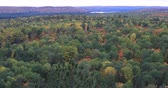 vibrante : 4K UltraHD Algonquin forest overlook in autumn