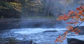 vibrante : 4K UltraHD Algonquin river rapids in beautiful fall colors
