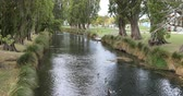 christchurch : Tree lined river in downtown Christchurch, New Zealand 4K Stock Footage