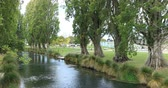 christchurch : Tree lined river in Christchurch, New Zealand 4K