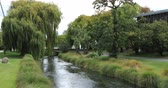 christchurch : Tree lined river in Christchurch, New Zealand city center 4K