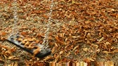 silence : Swing rocks gently over autumnal painted leaves