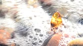 minerals : Amber on a beach of the Baltic Sea Stock Footage