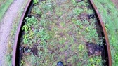 urbane : walking on an old closed railway on a rainy day in a forest in Poland